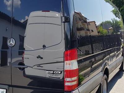 Bus 217